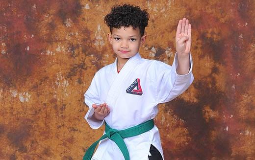 Ed Rose's Martial Arts Academy Programs image